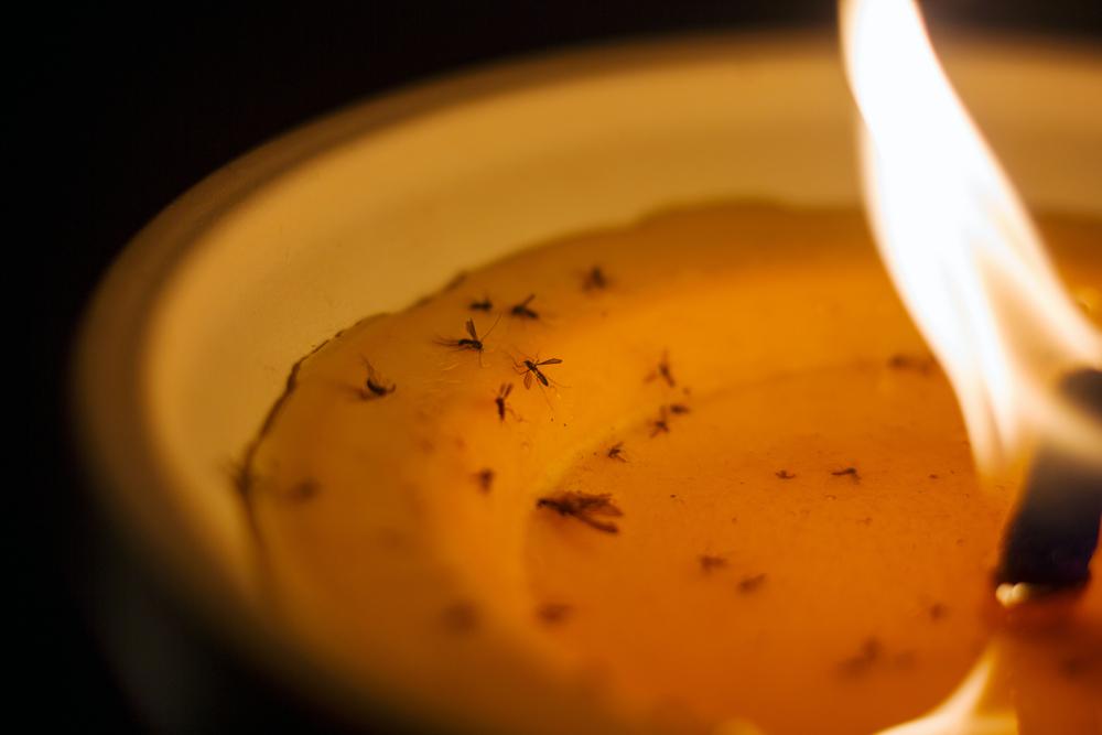 velas antimosquitos